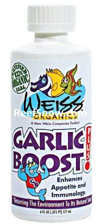 Garlic Boost plus !