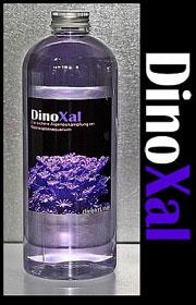 DinoXAL